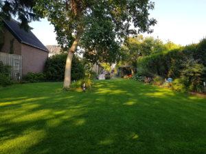 Gras Ferticutatie